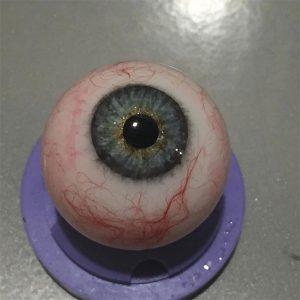 Master di Specializzazione in riproduzione bulbo oculare